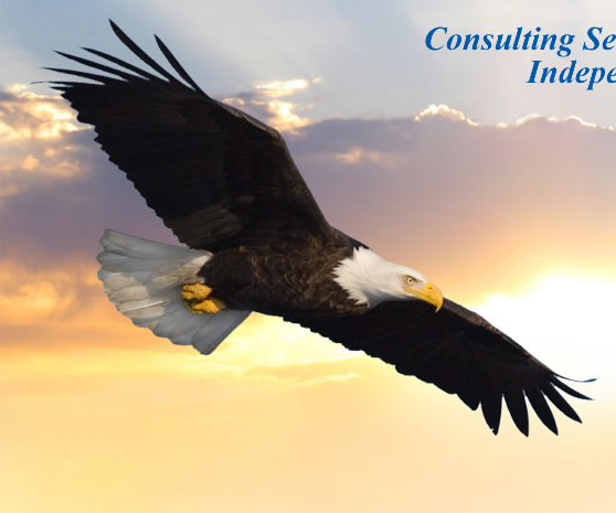 Knowledge Consulting Group Inc 18